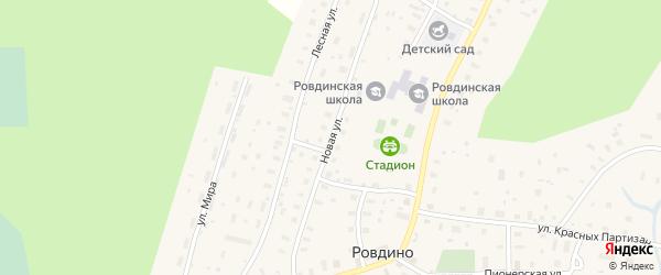 Новая улица на карте села Ровдино с номерами домов