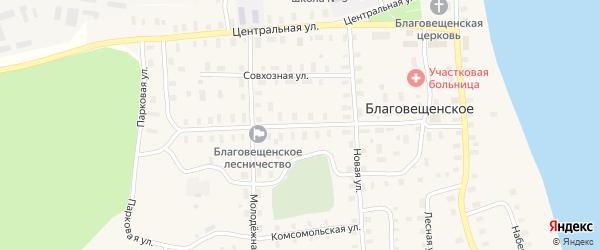 Южная улица на карте Благовещенского села с номерами домов