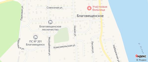 Новая улица на карте Благовещенского села с номерами домов