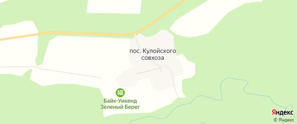 Карта поселка Кулойского совхоза в Архангельской области с улицами и номерами домов