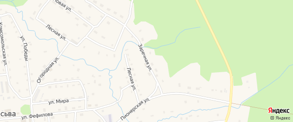 Заречная улица на карте поселка Пасьвы с номерами домов