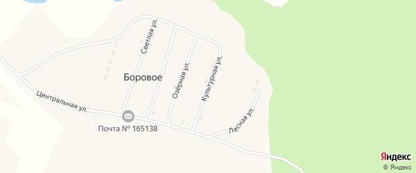 Культурная улица на карте поселка Борового с номерами домов