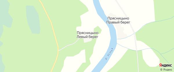 Карта деревни Прясницыно Левый берег в Архангельской области с улицами и номерами домов