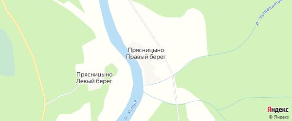Карта деревни Прясницыно Правый берег в Архангельской области с улицами и номерами домов