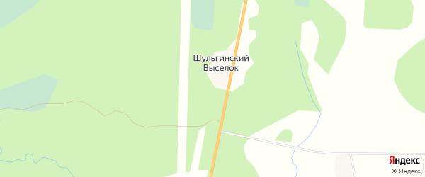 Карта деревни Шульгинского Выселка в Архангельской области с улицами и номерами домов