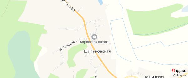 Карта Шипуновской деревни в Архангельской области с улицами и номерами домов