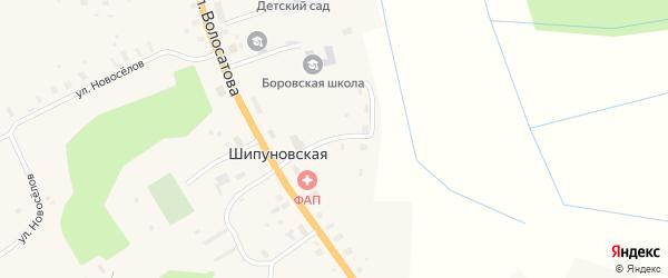 Школьная улица на карте Шипуновской деревни с номерами домов