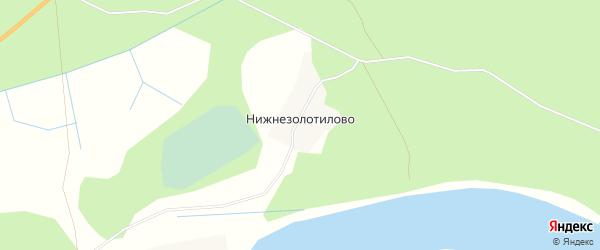 Карта деревни Нижнезолотилово в Архангельской области с улицами и номерами домов