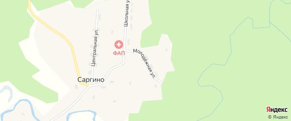 Молодежная улица на карте поселка Саргино с номерами домов