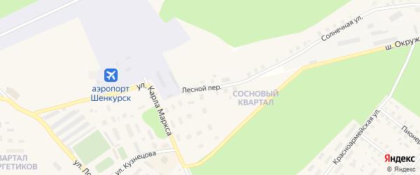 Лесной переулок на карте Шенкурска с номерами домов