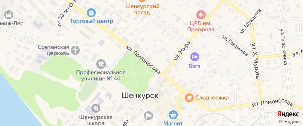 Улица Ломоносова на карте Шенкурска с номерами домов