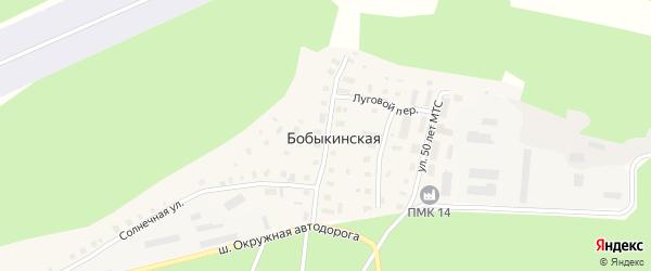 Колхозная улица на карте Бобыкинской деревни с номерами домов