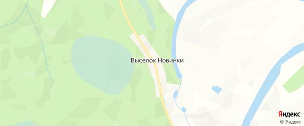 Карта деревни Выселка Новинки в Архангельской области с улицами и номерами домов