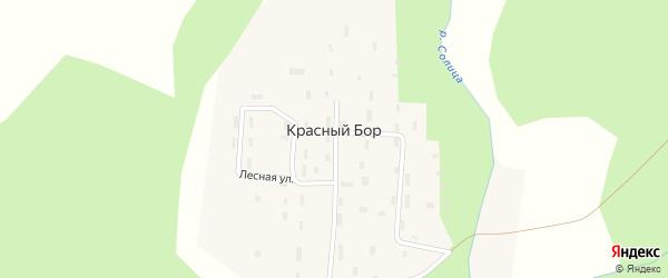 Речная улица на карте поселка Красного Бора с номерами домов