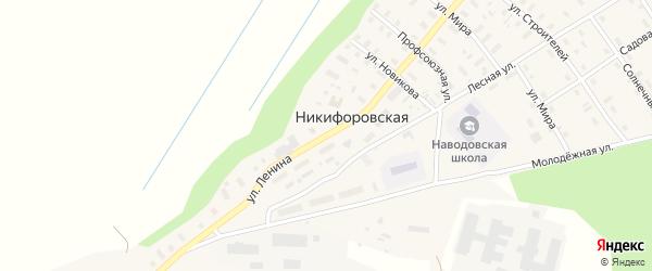Улица Ленина на карте Никифоровской деревни с номерами домов