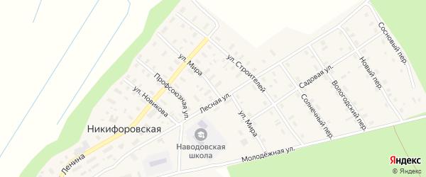 Улица Мира на карте Никифоровской деревни с номерами домов