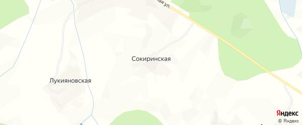 Карта Сокиринской деревни в Архангельской области с улицами и номерами домов