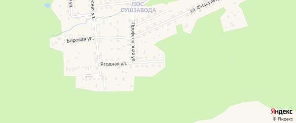 Ягодная улица на карте Октябрьского поселка с номерами домов
