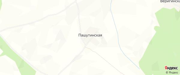 Карта Пашутинской деревни в Архангельской области с улицами и номерами домов