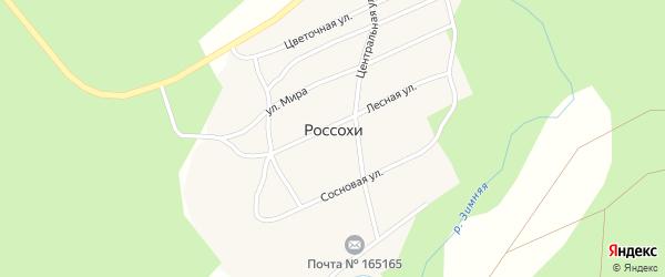 Цветочная улица на карте поселка Россохи с номерами домов