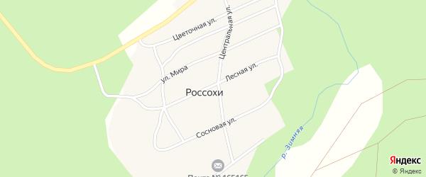 Центральная улица на карте поселка Россохи с номерами домов