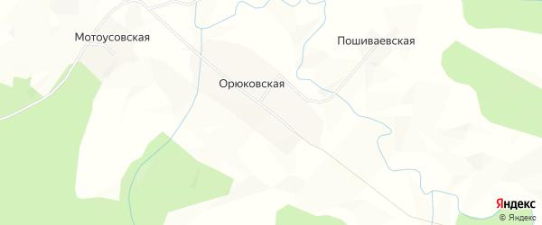 Карта Орюковской деревни в Архангельской области с улицами и номерами домов
