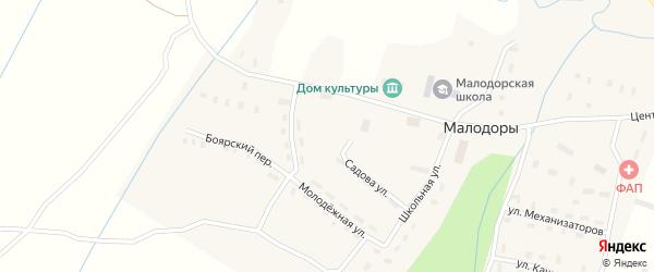 Боярский переулок на карте села Малодоры с номерами домов
