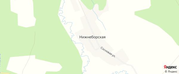 Карта Нижнеборской деревни в Архангельской области с улицами и номерами домов
