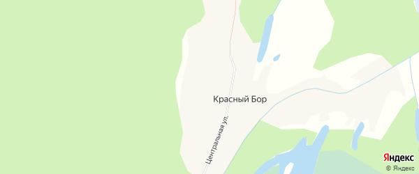 Карта поселка Красного Бора в Архангельской области с улицами и номерами домов