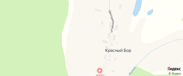 Лесная улица на карте поселка Красного Бора с номерами домов