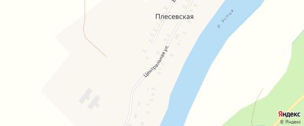 Центральная улица на карте Плесевской деревни с номерами домов