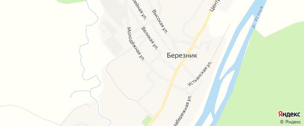 Карта деревни Березника в Архангельской области с улицами и номерами домов