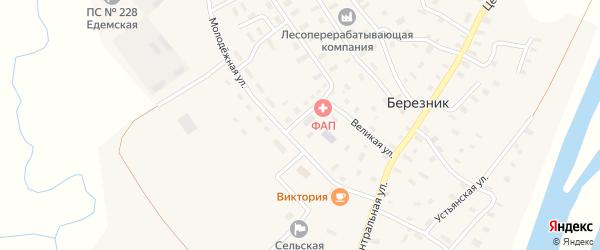 Извилистый переулок на карте села Березника с номерами домов