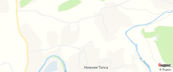 Карта деревни Нижней Топсы в Архангельской области с улицами и номерами домов