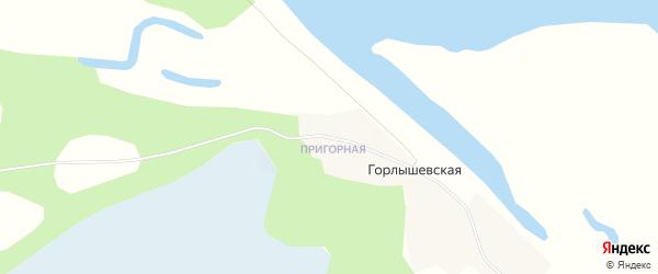 Карта Горлышевской деревни в Архангельской области с улицами и номерами домов