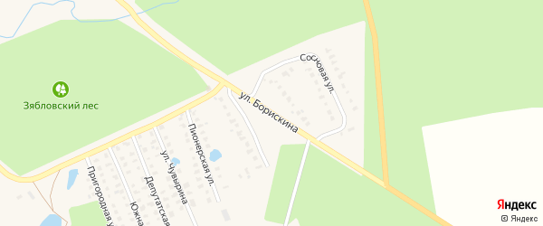 Улица Борискина на карте Первомайска с номерами домов