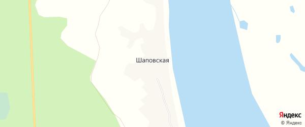 Карта Шаповской деревни в Архангельской области с улицами и номерами домов