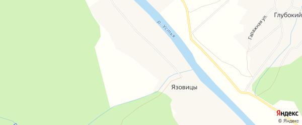 Карта деревни Язовицы в Архангельской области с улицами и номерами домов