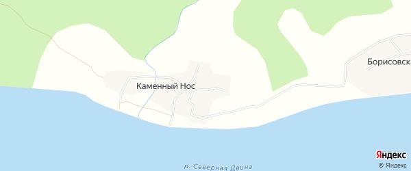 Карта деревни Каменного Носа в Архангельской области с улицами и номерами домов