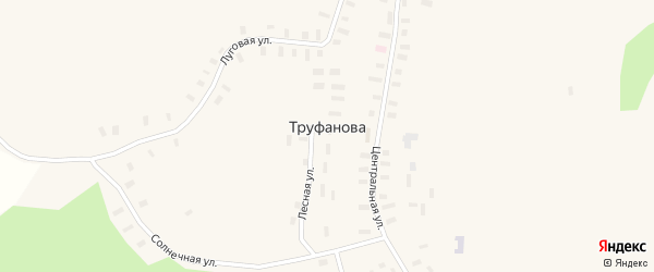 Центральная улица на карте деревни Труфанова с номерами домов