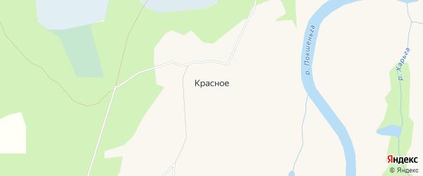 Карта деревни Красного в Архангельской области с улицами и номерами домов