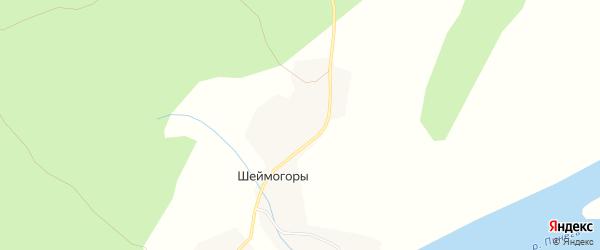 Карта деревни Шеймогор в Архангельской области с улицами и номерами домов