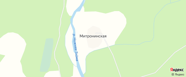 Карта Митронинской деревни в Архангельской области с улицами и номерами домов
