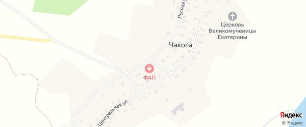 Лесная улица на карте деревни Чаколы с номерами домов