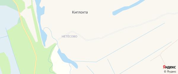 Карта деревни Киглохты в Архангельской области с улицами и номерами домов