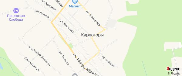 Карта села Карпогор в Архангельской области с улицами и номерами домов