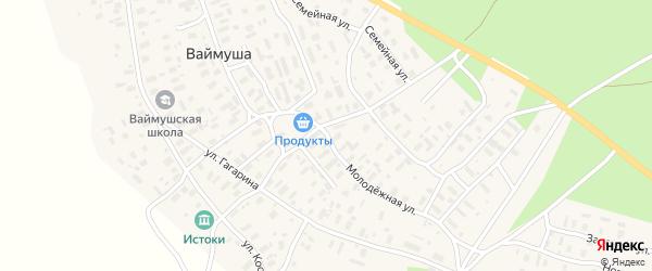 Молодежная улица на карте деревни Ваймуши с номерами домов