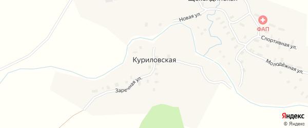 Заречная улица на карте Куриловской деревни с номерами домов