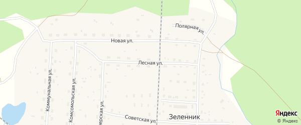 Лесная улица на карте поселка Зеленника с номерами домов