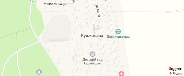 Лесная улица на карте деревни Кушкопалы с номерами домов
